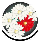 AIUC - ASSOCIAZIONE ITALIANA ULCERE CUTANEE